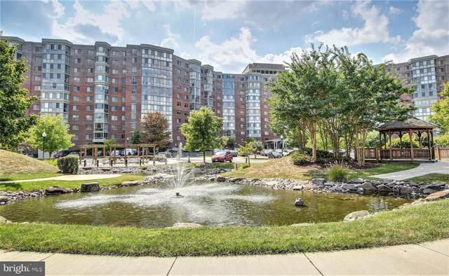 3100 N Leisure World Boulevard #620, SILVER SPRING, MD 20906 (#MDMC726154) :: Certificate Homes