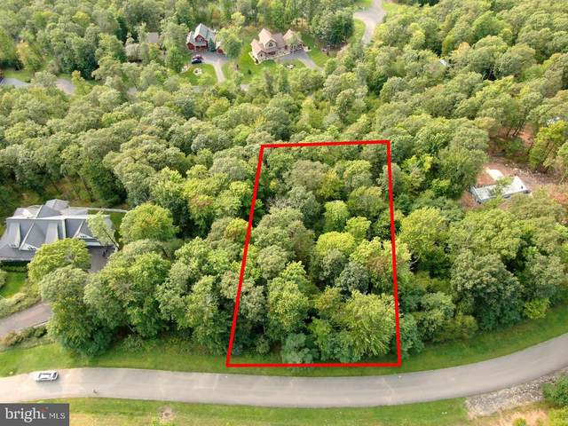 Lot 87 Falcon Way, MC HENRY, MD 21541 (#MDGA133578) :: The Mike Coleman Team