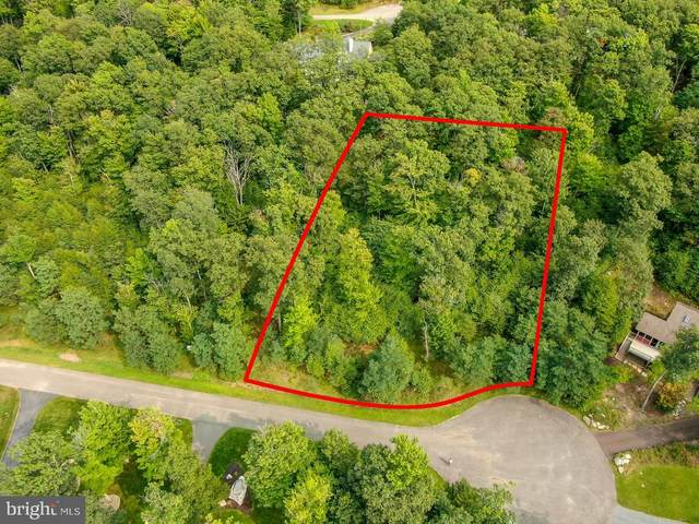 Lot 99 Birdsong Way, MC HENRY, MD 21541 (#MDGA133580) :: The Mike Coleman Team