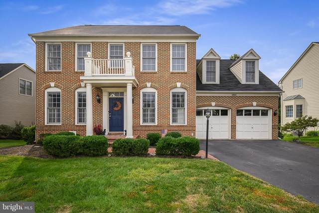 19005 Snowberry Court, LEESBURG, VA 20176 (#VALO421614) :: Debbie Dogrul Associates - Long and Foster Real Estate