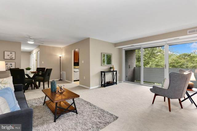 5614 Bloomfield Drive #202, ALEXANDRIA, VA 22312 (#VAFX1155940) :: Crossman & Co. Real Estate