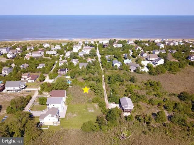 112 Mississippi Avenue, MILTON, DE 19968 (#DESU169408) :: Premier Property Group