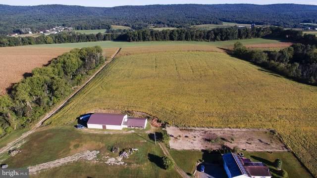 3891 Sweet Arrow Lake Road, PINE GROVE, PA 17963 (#PASK132462) :: John Lesniewski | RE/MAX United Real Estate