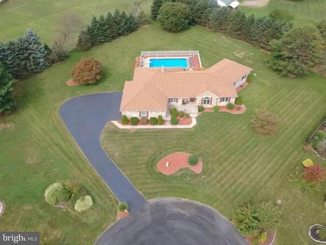 148 Belle Drive, ELIZABETHVILLE, PA 17023 (#PADA125832) :: The Joy Daniels Real Estate Group