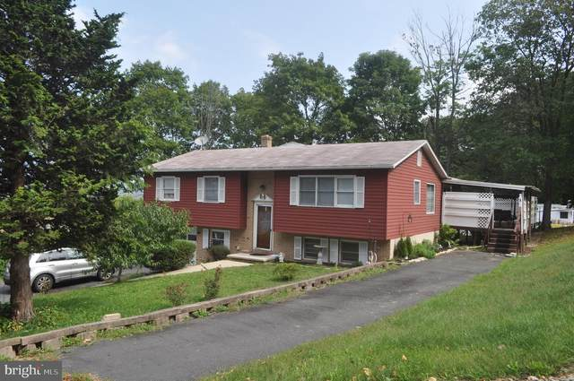 126 S 21ST Street, POTTSVILLE, PA 17901 (#PASK132464) :: The Matt Lenza Real Estate Team