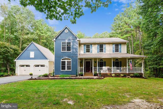 23891 Deep Hollow Lane, ALDIE, VA 20105 (#VALO421682) :: Debbie Dogrul Associates - Long and Foster Real Estate