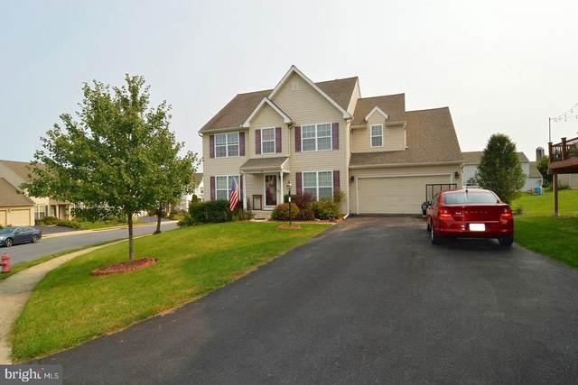 42 Dawkins Drive, EAST EARL, PA 17519 (#PALA170392) :: The Joy Daniels Real Estate Group