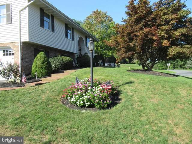298 Donna Avenue, LANCASTER, PA 17603 (#PALA170398) :: The Craig Hartranft Team, Berkshire Hathaway Homesale Realty