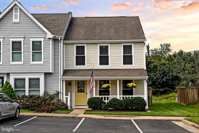 22364 Stablehouse Drive, STERLING, VA 20164 (#VALO421716) :: The Gus Anthony Team