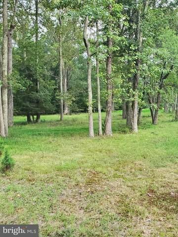 Driftwood Ln, STAFFORD, VA 22554 (#VAST225780) :: Bob Lucido Team of Keller Williams Integrity