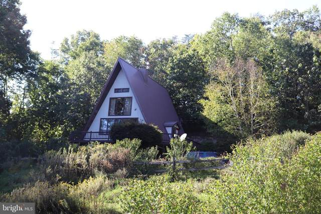 3034 Entrenet Lane, JAMES CREEK, PA 16657 (#PAHU101696) :: Century 21 Home Advisors