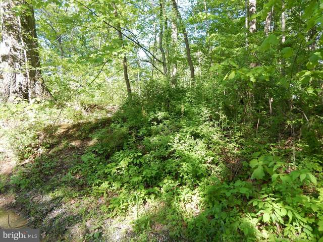Raging River Drive, FALLING WATERS, WV 25419 (#WVBE180488) :: Revol Real Estate