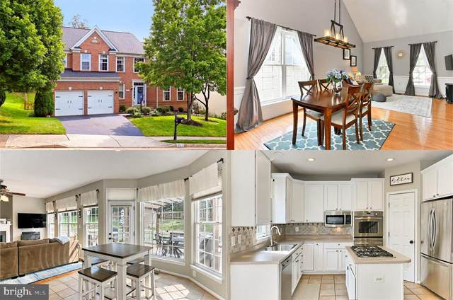 812 Larch Valley Court NE, LEESBURG, VA 20176 (#VALO421772) :: Debbie Dogrul Associates - Long and Foster Real Estate