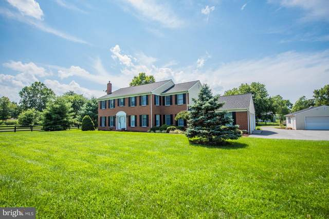 799 Crums Church Road, BERRYVILLE, VA 22611 (#VACL111750) :: Pearson Smith Realty