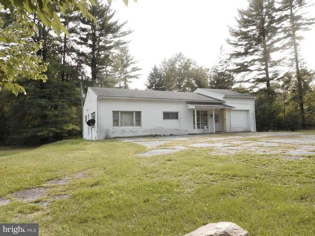 33 Donaldson Road, TREMONT, PA 17981 (#PASK132480) :: The Heather Neidlinger Team With Berkshire Hathaway HomeServices Homesale Realty