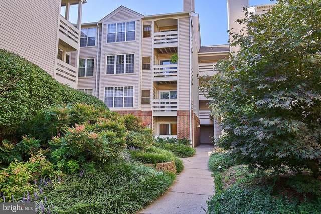 244 S Reynolds Street #112, ALEXANDRIA, VA 22304 (#VAAX251234) :: CENTURY 21 Core Partners