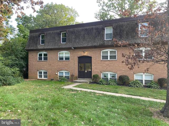 3716 Mayberry Avenue D, BALTIMORE, MD 21206 (#MDBA525018) :: The MD Home Team