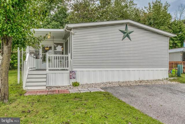 141 Rodeo Circle, MIDDLE RIVER, MD 21220 (#MDBC507152) :: AJ Team Realty