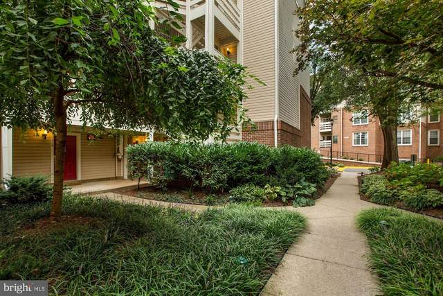 240 S Reynolds Street #310, ALEXANDRIA, VA 22304 (#VAAX251244) :: Jennifer Mack Properties