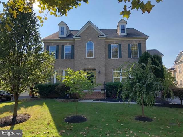 22767 Sweet Andrea Drive, BRAMBLETON, VA 20148 (#VALO421830) :: Debbie Dogrul Associates - Long and Foster Real Estate