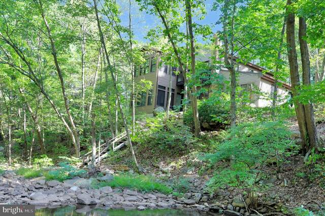 694 Ironmine Lane, HEDGESVILLE, WV 25427 (#WVMO117446) :: Jennifer Mack Properties