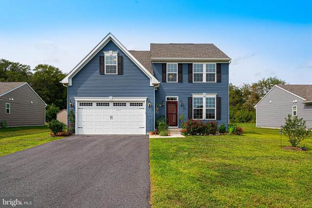 32386 W Haven Wood Drive, FRANKFORD, DE 19945 (#DESU169590) :: Brandon Brittingham's Team