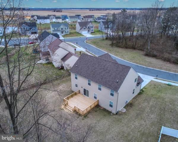 111 Burns Way, MAGNOLIA, DE 19962 (#DEKT242068) :: Colgan Real Estate