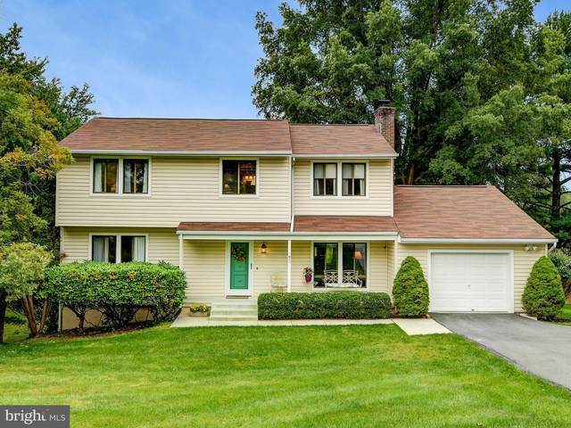 3 Hounds Hollow Court, OWINGS MILLS, MD 21117 (#MDBC507216) :: Bruce & Tanya and Associates