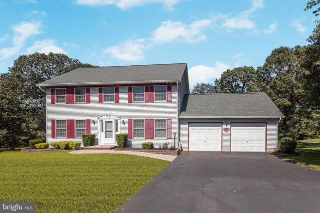 116 Dales Way Drive, PASADENA, MD 21122 (#MDAA447458) :: SURE Sales Group
