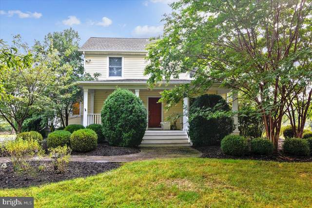 19840 Foggy Bottom Road, BLUEMONT, VA 20135 (#VALO421928) :: Debbie Dogrul Associates - Long and Foster Real Estate