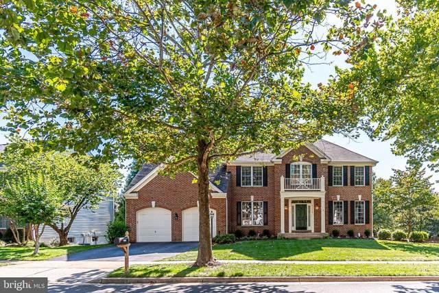 43770 Mink Meadows Street, CHANTILLY, VA 20152 (#VALO421972) :: Debbie Dogrul Associates - Long and Foster Real Estate