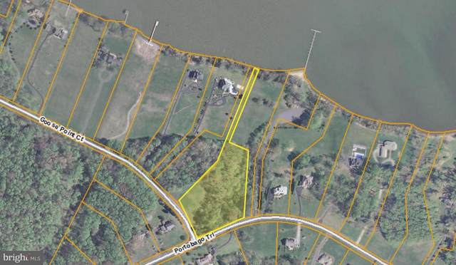 13 Portobago Trail, PORT ROYAL, VA 22535 (#VACV122884) :: The Redux Group