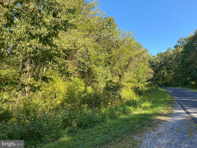 Lot #10 Amity Road, DUNCANNON, PA 17020 (#PAPY102666) :: The Heather Neidlinger Team With Berkshire Hathaway HomeServices Homesale Realty