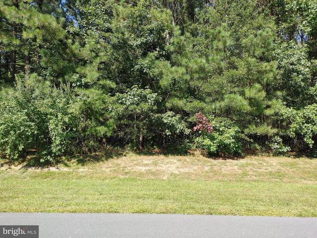 Lot 41 Red Fox Run, MILTON, DE 19968 (#DESU169702) :: RE/MAX Coast and Country