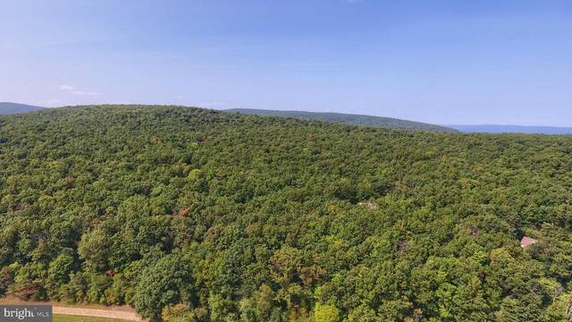 11 Oxford (Lot 1) Road, GARDNERS, PA 17324 (#PACB128158) :: The Heather Neidlinger Team With Berkshire Hathaway HomeServices Homesale Realty