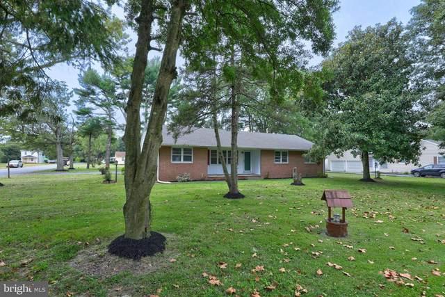 200 Woodlawn Avenue, DELMAR, MD 21875 (#MDWC109882) :: Bright Home Group
