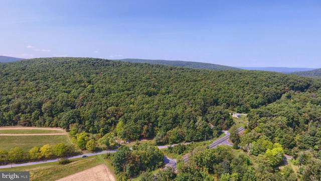 11 Oxford (Lot 3) Road, GARDNERS, PA 17324 (#PACB128162) :: The Heather Neidlinger Team With Berkshire Hathaway HomeServices Homesale Realty