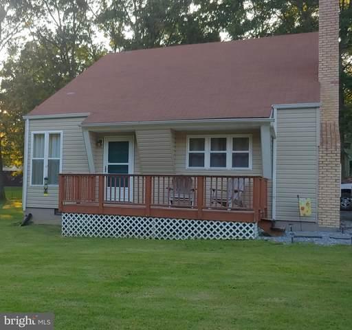 597 Grandview Drive, LURAY, VA 22835 (#VAPA105634) :: The Licata Group/Keller Williams Realty