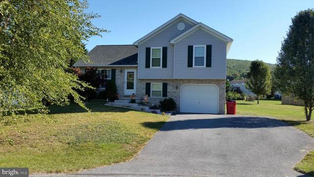 1144 Mountain Shadow Court, FAYETTEVILLE, PA 17222 (#PAFL175392) :: Great Falls Great Homes