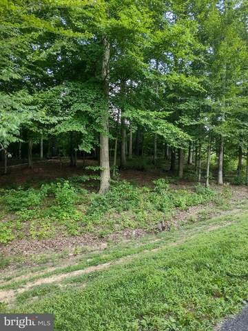 Fairview Drive, MINERAL, VA 23117 (#VALA122022) :: RE/MAX Cornerstone Realty