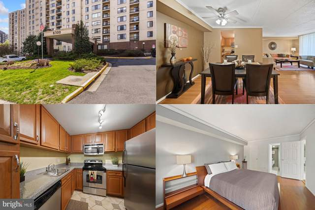 6300 Stevenson Avenue #104, ALEXANDRIA, VA 22304 (#VAAX251350) :: The Riffle Group of Keller Williams Select Realtors