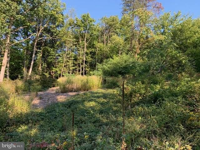 Lot 35 Beaver Trail, WINCHESTER, VA 22602 (#VAFV159918) :: Blackwell Real Estate
