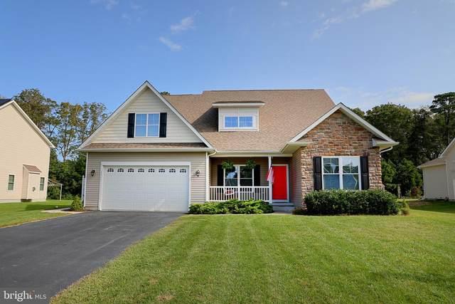 22595 Ramble Road, LEWES, DE 19958 (#DESU169812) :: Linda Dale Real Estate Experts