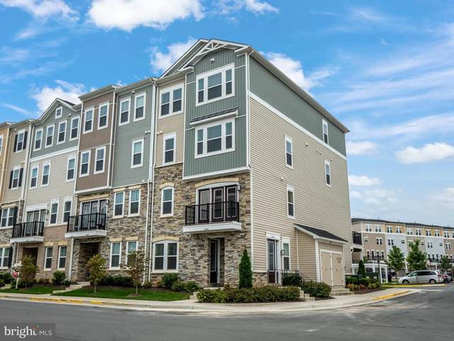 42041 Berkley Hill Terrace, ALDIE, VA 20105 (#VALO422094) :: The Licata Group/Keller Williams Realty