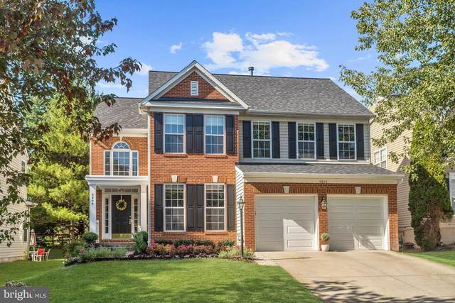 5804 White Pebble Path, CLARKSVILLE, MD 21029 (#MDHW285696) :: The Daniel Register Group