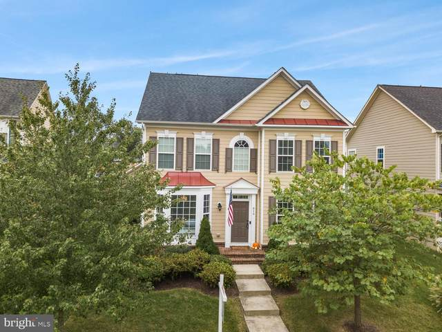 816 Kinvarra Place, PURCELLVILLE, VA 20132 (#VALO422218) :: EXP Realty