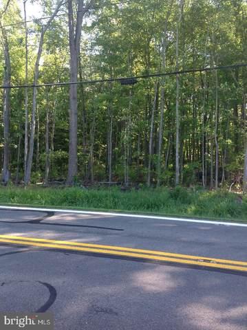 1449 Snug Harbor Road, SHADY SIDE, MD 20764 (#MDAA447804) :: The Miller Team
