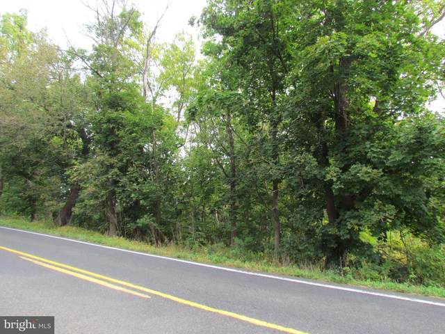 Lot 32 Durham Road, PIPERSVILLE, PA 18947 (#PABU507872) :: Lucido Agency of Keller Williams