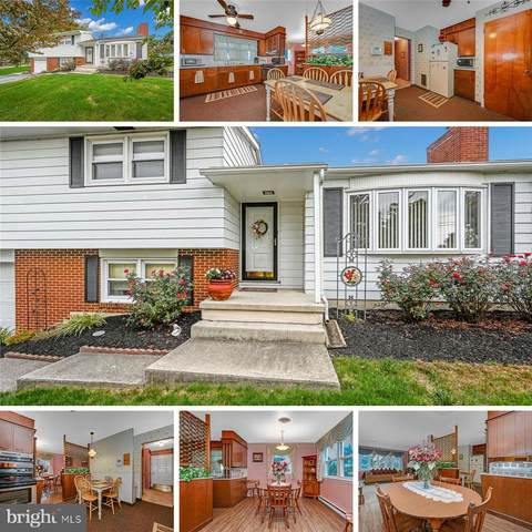 111 Wintersville Road, MYERSTOWN, PA 17067 (#PALN115952) :: The Jim Powers Team