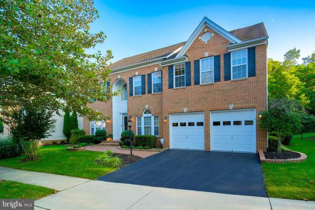 43945 Riverpoint Drive, LEESBURG, VA 20176 (#VALO422250) :: EXP Realty